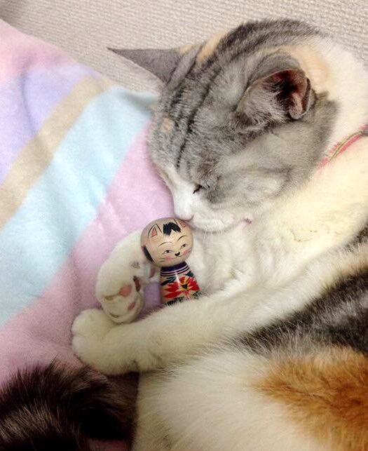 A cat and cat kokeshi doll